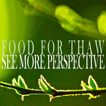 Food For Thaw cover 5 website